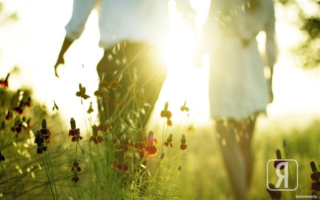 счастье, вкус, счастья,песня,скачать, счастья, бывшему, суть, онлайн,женское, цветок,бесплатное, сериал, жизни, день, текст, здоровья, здоровье