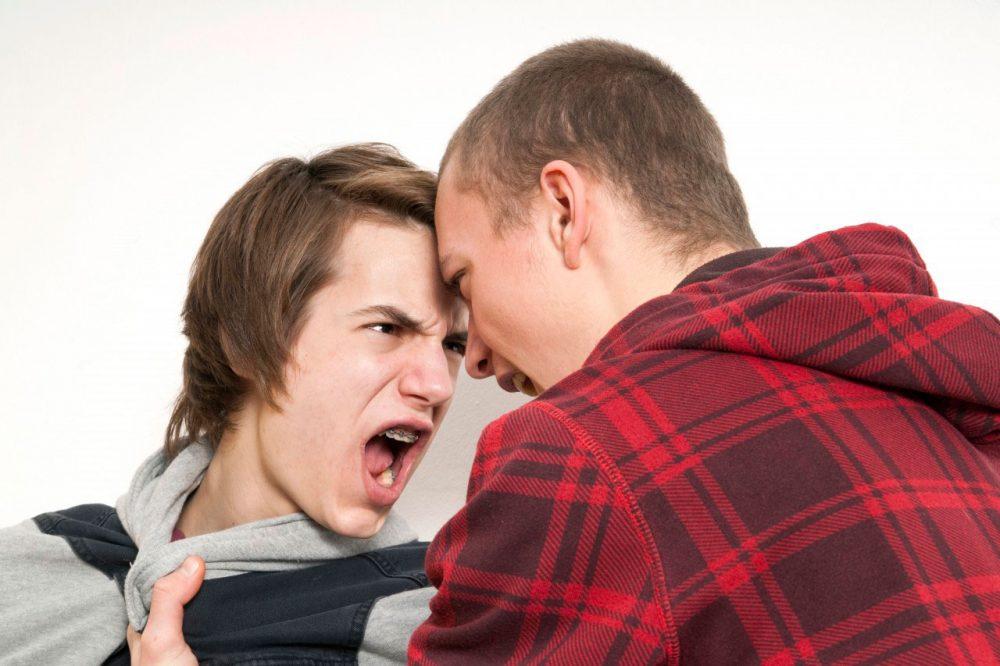 Агрессивность – это склонность личности нападать, оскорблять, причинять вред объектам или неприятности другим людям, убить врага. Агрессивность – это эмоциональный выплеск адреналиновой избыточности в благородных целях.